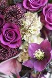 Αρχικός μια δέσμη των λουλουδιών από Anthurium, hellebores, τριαντάφυλλα, γαρίφαλα Στοκ Φωτογραφίες