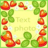 Αρχικό πλαίσιο για τις φωτογραφίες και το κείμενο Τα γλυκά juicy μούρα φραουλών, λουλούδια, φύλλα δημιουργούν μια εορταστική διάθ ελεύθερη απεικόνιση δικαιώματος