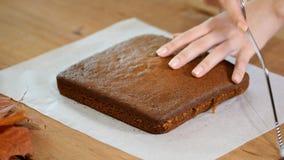 Αρχιμάγειρας ζύμης που κόβει το κέικ σφουγγαριών στα στρώματα Διαδικασία παραγωγής κέικ απόθεμα βίντεο