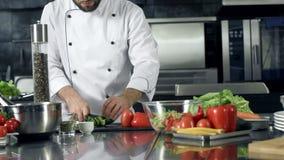 Αρχιμάγειρας που μαγειρεύει τη φρέσκια σαλάτα στην κουζίνα Αρσενικά χέρια κινηματογραφήσεων σε πρώτο πλάνο που κόβουν το αγγούρι φιλμ μικρού μήκους
