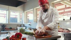 Αρχιμάγειρας που προετοιμάζει μια σαλάτα που αναμιγνύει τα συστατικά στην κουζίνα του εστιατορίου απόθεμα βίντεο