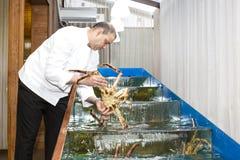 Αρχιμάγειρας του εστιατορίου ψαριών με τα θαλασσινά Στοκ εικόνα με δικαίωμα ελεύθερης χρήσης