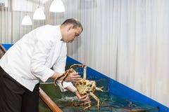 Αρχιμάγειρας του εστιατορίου ψαριών Στοκ Εικόνες