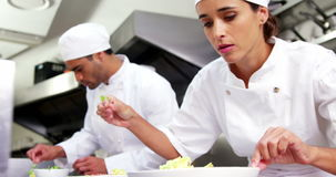 Αρχιμάγειρες που διακοσμούν το πιάτο τροφίμων απόθεμα βίντεο