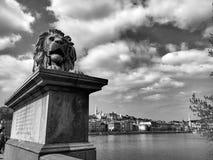 Αρχιτεκτονικές λεπτομέρειες αγαλμάτων λιονταριών στη Βουδαπέστη Στοκ Φωτογραφίες