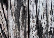 αρχιτεκτονικής ανασκόπησης πορτών στοιχείων μετάλλων παλαιό αγροτικό δάσος αποθηκών εμπορευμάτων σύστασης εκλεκτής ποιότητας Στοκ Εικόνα