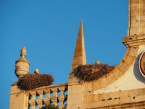 Αρχιτεκτονική σε Faro Πορτογαλία με τις φωλιές πελαργών στοκ φωτογραφία