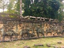 Αρχιτεκτονική της Καμπότζης Bas-ανακούφιση Μάχη με τους ελέφαντες κατά μήκος του πεζουλιού των ελεφάντων Χάραξη τοίχων σε Angkor  Στοκ εικόνα με δικαίωμα ελεύθερης χρήσης