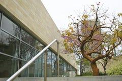 αρχιτεκτονική Los της Angeles Στοκ φωτογραφίες με δικαίωμα ελεύθερης χρήσης