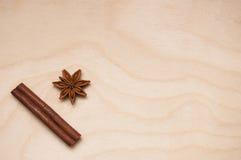 Αρωματικά καρυκεύματα για τα υγιή και αρωματικά τρόφιμα Στοκ Εικόνες