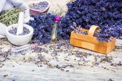 Αρωματικές εγκαταστάσεις, lavender στοκ φωτογραφίες