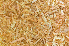 Αρωματική νιφάδα του ελβετικού πεύκου πετρών, αυστριακό ξύλο πεύκων Arolla CH Στοκ Φωτογραφίες