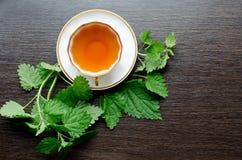 Αρωματικό οργανικό φυσικό βοτανικό τσάι από τα nettle φύλλα Στοκ φωτογραφία με δικαίωμα ελεύθερης χρήσης