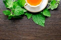 Αρωματικό οργανικό φυσικό βοτανικό τσάι από τα nettle φύλλα Στοκ Φωτογραφίες
