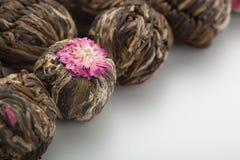 Αρωματικό πράσινο κινεζικό τσάι λουλουδιών Στοκ Εικόνες