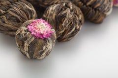 Αρωματικό πράσινο κινεζικό τσάι λουλουδιών Στοκ Εικόνα