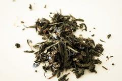 Αρωματικό τσάι που απομονώνεται Στοκ Εικόνα