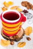 Αρωματικό τσάι φρούτων σε μια πλεκτή κάλυψη στοκ εικόνα με δικαίωμα ελεύθερης χρήσης