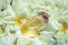 Αρωματισμένος αυξήθηκε πετρέλαιο Φυσικό πετρέλαιο για τη χαλάρωση σε ένα floral υπόβαθρο στοκ εικόνες