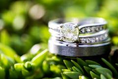 Ασήμι, γαμήλιο δαχτυλίδι διαμαντιών σε ένα υπόβαθρο πράσινων εγκαταστάσεων στοκ φωτογραφία με δικαίωμα ελεύθερης χρήσης