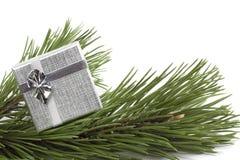 ασήμι δώρων scpuce Στοκ εικόνες με δικαίωμα ελεύθερης χρήσης