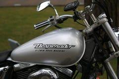 Ασήμι ντεσπεράντο Suzuki VZ400 μοτοσικλετών υπαίθριο Δεξαμενή καυσίμων με στενό επάνω λογότυπων στοκ εικόνα
