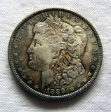 ασήμι του Morgan δολαρίων στοκ εικόνα