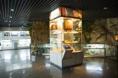Ασία Κίνα, Πεκίνο, γεωλογικό μουσείο, εσωτερική αίθουσα έκθεσης Στοκ φωτογραφία με δικαίωμα ελεύθερης χρήσης