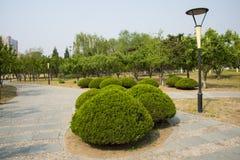 Ασία Κίνα, Πεκίνο, πάρκο παλατιών ήλιων, λαμπτήρας ¼ ŒLandscape, διαμορφωμένη μανιτάρι τοπίων architectureï πράσινη ζώνη Στοκ Εικόνες