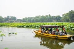 Ασία Κίνα, Πεκίνο, παλαιό θερινό παλάτι, λίμνη λωτού, η βάρκα Στοκ Φωτογραφία