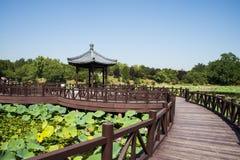 Ασία Κίνα, Πεκίνο, παλαιό θερινό παλάτι, λίμνη λωτού, ξύλινο περίπτερο γεφυρών Στοκ φωτογραφία με δικαίωμα ελεύθερης χρήσης