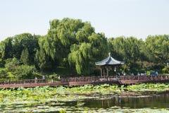 Ασία Κίνα, Πεκίνο, παλαιό θερινό παλάτι, λίμνη λωτού φθινοπώρου, ξύλινη γέφυρα περίπτερων Στοκ Φωτογραφίες