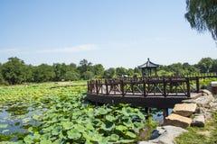 Ασία Κίνα, Πεκίνο, παλαιό θερινό παλάτι, τοπίο λιμνών, λίμνη λωτού, ξύλινο περίπτερο Στοκ εικόνες με δικαίωμα ελεύθερης χρήσης