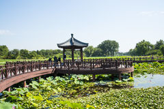 Ασία Κίνα, Πεκίνο, παλαιό θερινό παλάτι, τοπίο λιμνών, λίμνη λωτού, ξύλινο περίπτερο Στοκ Εικόνες