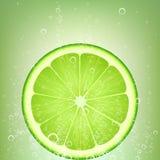Ασβέστης λεμονάδας Στοκ Εικόνες