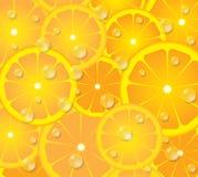 ασβέστης χρώματος κύκλων διανυσματική απεικόνιση