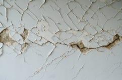 Ασβεστοκονίαμα σεισμού Στοκ Εικόνα