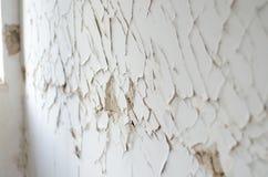 Ασβεστοκονίαμα σεισμού Στοκ Εικόνες