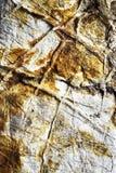 Ασβεστόλιθος επιφάνειας με τις φλέβες στοκ εικόνα