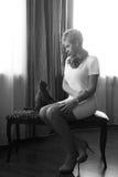 ασημένια γυναίκα του Maine γατών coon Στοκ φωτογραφία με δικαίωμα ελεύθερης χρήσης