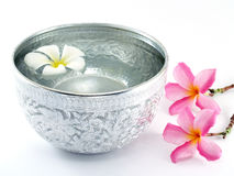 Ασημένια κύπελλο και λουλούδια νερού Στοκ εικόνα με δικαίωμα ελεύθερης χρήσης