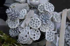 Ασημένια ξηρά ρίζα λωτού στην ανθοδέσμη για την πώληση Στοκ Φωτογραφίες