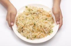 Ασημένια σαλάτα στο άσπρο υπόβαθρο στοκ εικόνες