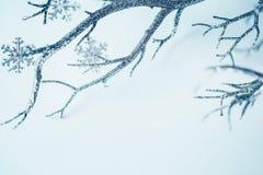 Ασημένιος κλάδος Χριστουγέννων και μεταλλικά Snowflakes Στοκ Φωτογραφίες