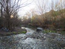 Ασημένιος ποταμός Στοκ Εικόνα