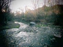 Ασημένιος ποταμός 2 Στοκ Φωτογραφία