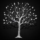 Ασημένιο δέντρο με τους κύκλους στοκ φωτογραφία με δικαίωμα ελεύθερης χρήσης
