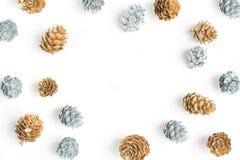 Ασημένιο και χρυσό πλαίσιο Pinecone Στοκ Εικόνες