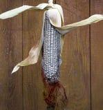 Ασημένιο καλαμπόκι στο κοχύλι του στο αμυδρό ξύλινο υπόβαθρο Στοκ Φωτογραφίες