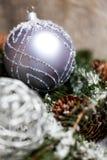 Ασημένιο μπιχλιμπίδι Χριστουγέννων σε ένα δέντρο με το χιόνι Στοκ Φωτογραφία